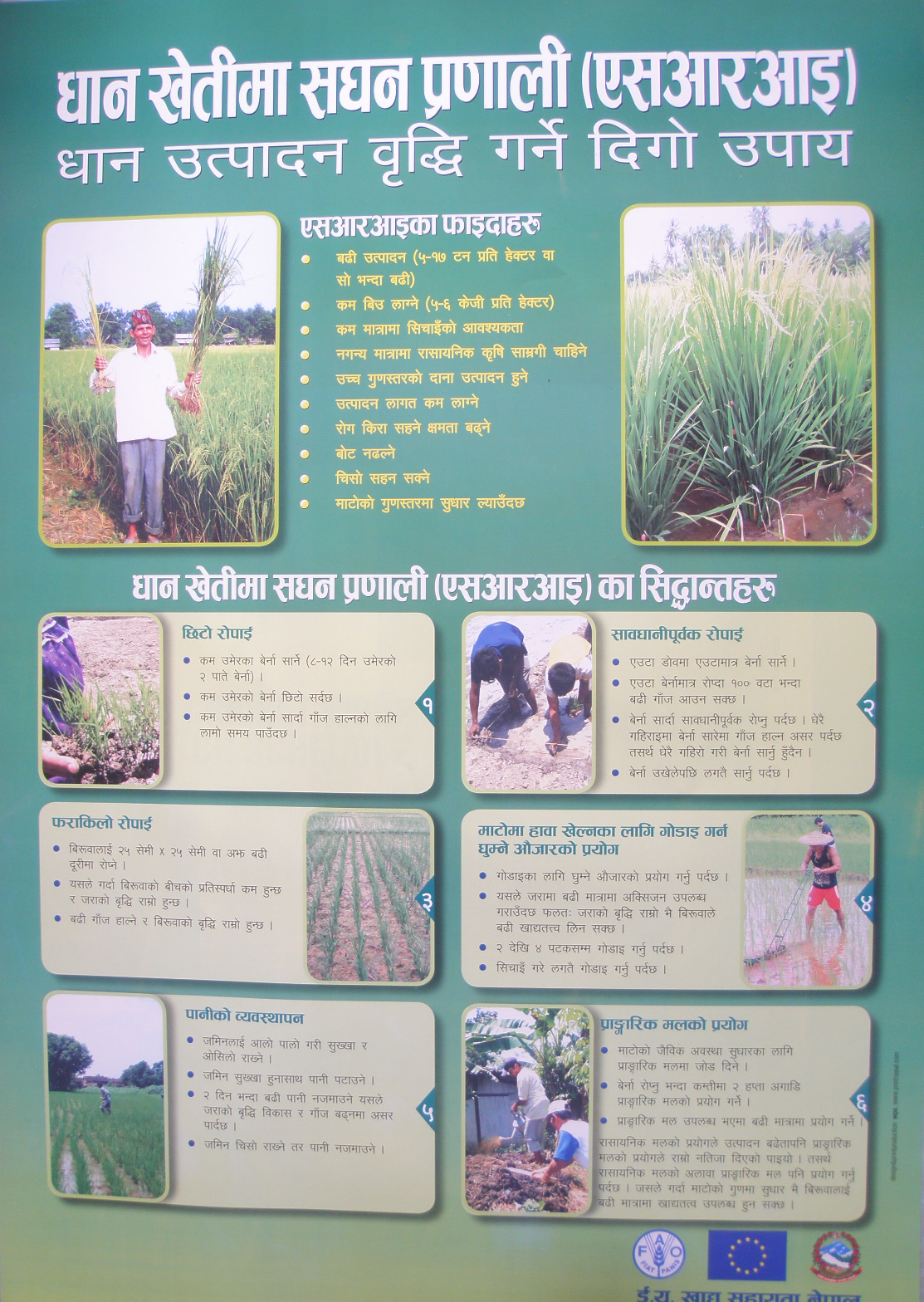 thesis on organic farming in nepal Our farm is an exemplary permaculture farm it is located in patalekhet, approximately 42 km east from kathmandu organic marketing thesis research following are major permacultural aspects that can be learnt in our farm: house designing.