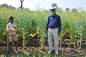 System of Mustard Intensification (SMI) in Bihar, India
